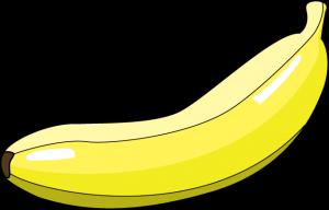 fruit_a15