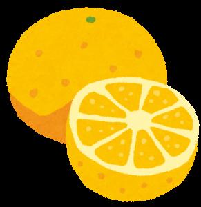 fruit_grapefruit2