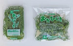 okahijiki2