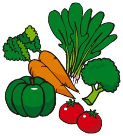 健康食品8S