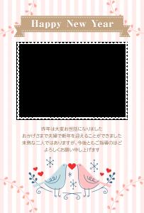 CNT-0012051-01