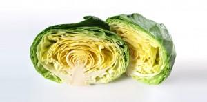 20101221-cabbage